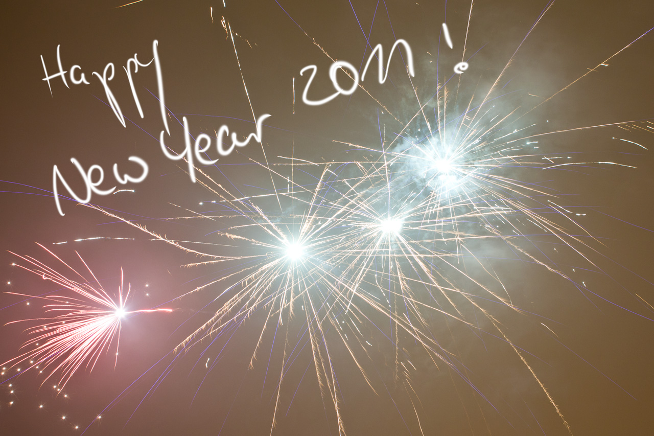 Wish u a very Happy & Prosperous New Year 2011 !